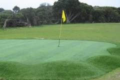 smallArtificial Club Green