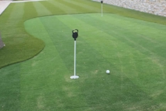 smallArtificial Putting