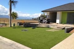 smallArtificial grass Pt Hinchinbrook